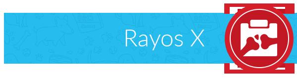 label-rayosx