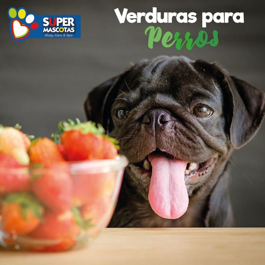 verduras-para-perros